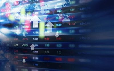 False Information Leading to Investment Losses